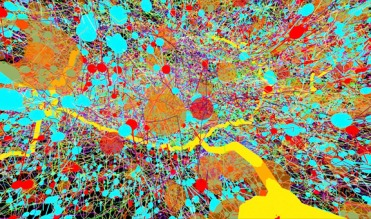 Reminiscent of a Jackson Pollock painting, this image shows part of the central nervous system in a fruit fly (Drosophila melanogaster). Transmission electron micrographs were used to create a digital colour-coded map of the area. An organism's nervous system controls everything it does, from breathing and moving to thinking and feeling. Instructions to perform these tasks are carried by cells called neurones. A neurone able to sense vibrations (yellow) is surrounded here by lots of other neurones, each depicted as a single line. Messages enter (blue circles) and exit (red circles) neurones at points of contact called synapses. Other features of interest (orange circles), such as mitochondria, are also marked. The width of the image is approximately 15 micrometres (0.015 mm). Science Communication